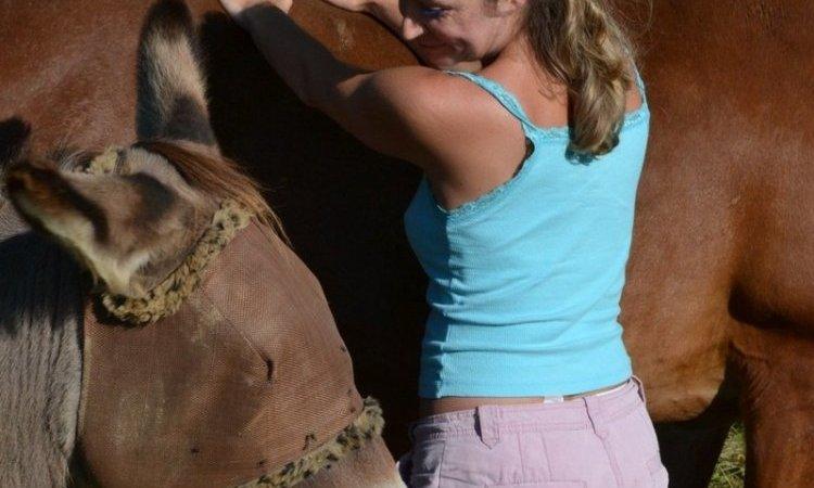 Ministre, l'âne vient nous voir pour une séance de Reiki à Belley Ain 01
